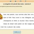 singulier-pluriel_ex05